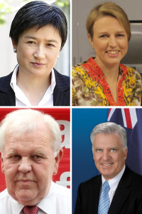 If a binding vote was good enough for Senators Wong & Pratt before the 2011 National Conference, it is good enough for Mr Hayes and Senator Bullock in 2015.
