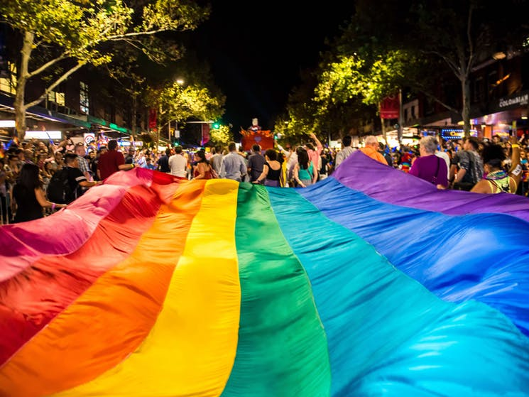 Mardi Gras flag